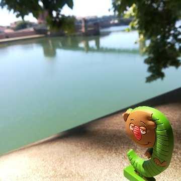 [JEUDI COULISSES]  L'été est bel et bien terminé pour les Alphas qui ont vite repéré le changement de temps soudain...  Le gulu se remémore les vacances à Toulouse, sur les bords de la Garonne, où il était sur le point d'exécuter une nouvelle bêtise !   Décrivez-nous le gulu en un mot !  #lesalphasofficiel #lesalphas #methode #lecture #recrealire #edition #pedagogie #apprentissage #gulu #enfants #lire #toulouse #garonne #eau #fleuve #betises